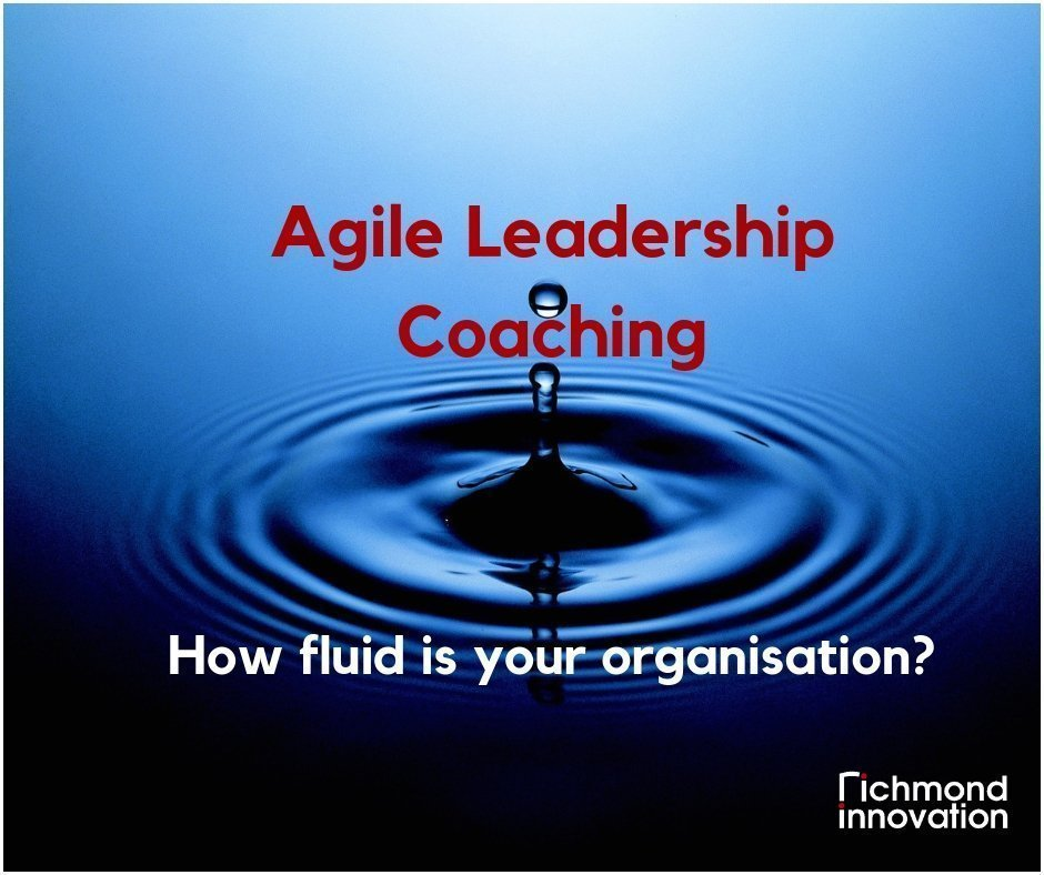 Agile Leadership Coaching - Richmond Innovation