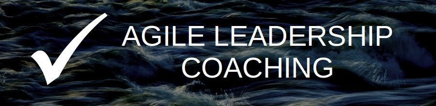 Agile Leadership Coaching Banner - Richmond Innovation